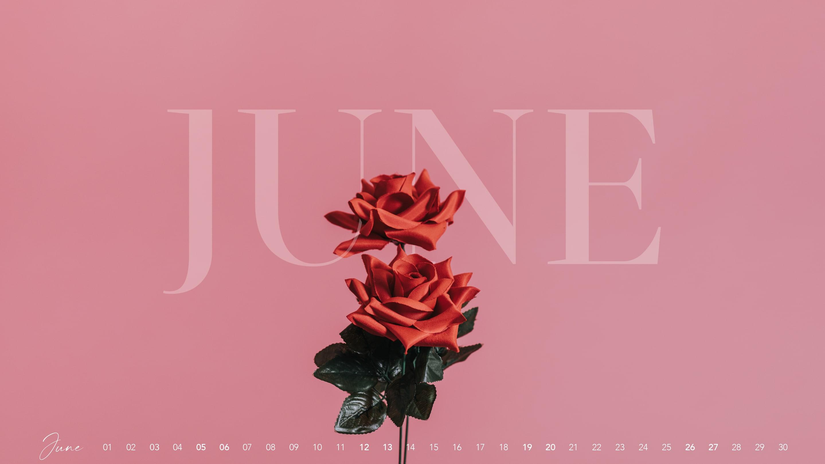 Juni-Wallpaper-2021-design-bildschirmhintergrund-rose